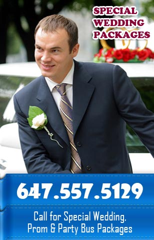 The Limousine Rentals is an outstanding company